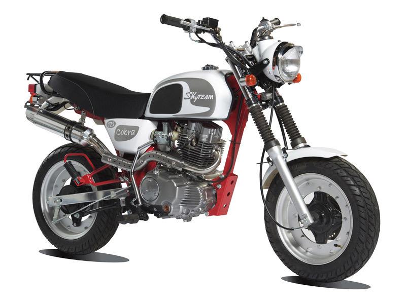 skyteam cobra 125 club honda dax replica honda monkey. Black Bedroom Furniture Sets. Home Design Ideas